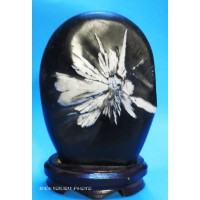 Chrysanthemum Stone with wooden base