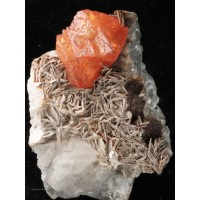 Scheelite on Muscovite and Beryl