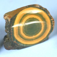 Ocean Jasper polished eye