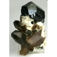 Tourmaline, var. Schorlite on Albite with Quartz