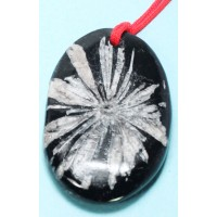 Chrysanthemum Stone (wearable as jewelry)